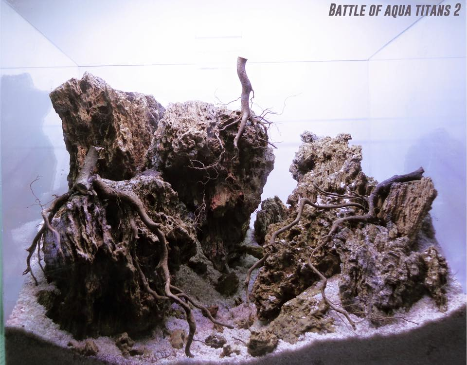 battle of aqua titans hardscape