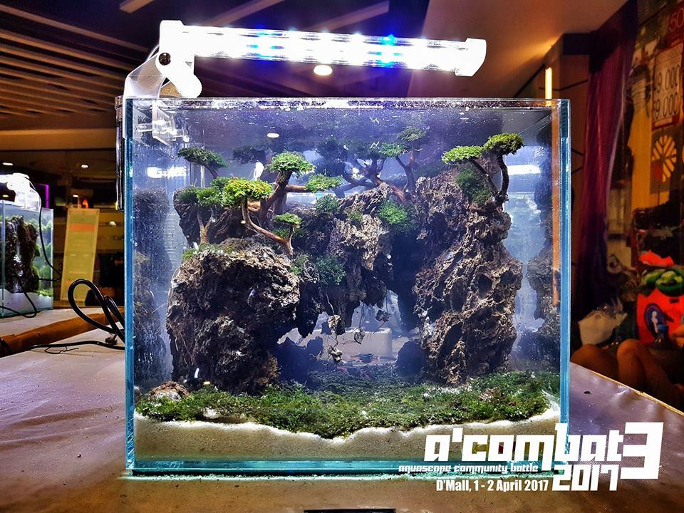 Inspiratie – A'Combat3 2017 - 30 cm aquaria